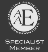American Association of Endodontists Speacial Member